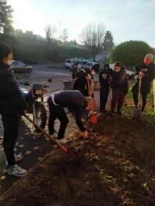Read more about the article Un jardin potager de plantes aromatiques au lycée