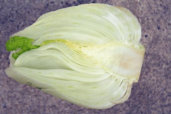 fennelside