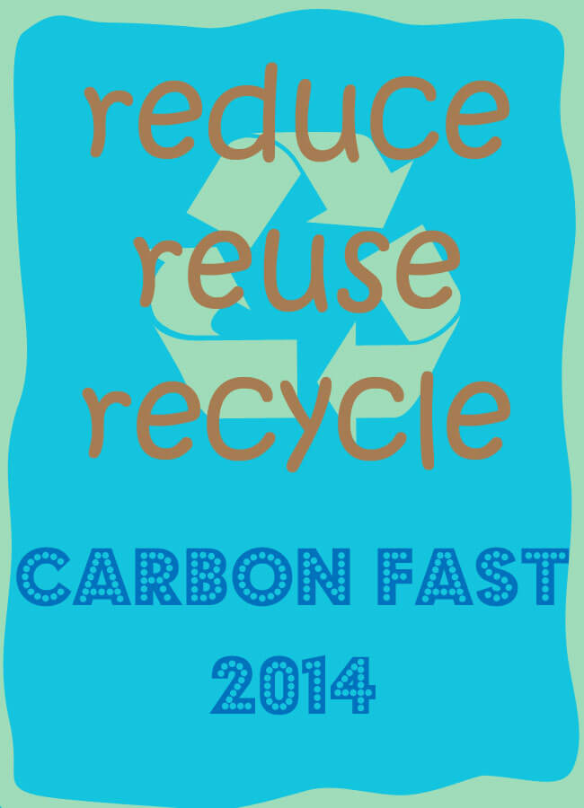 Carbon Fast 2014