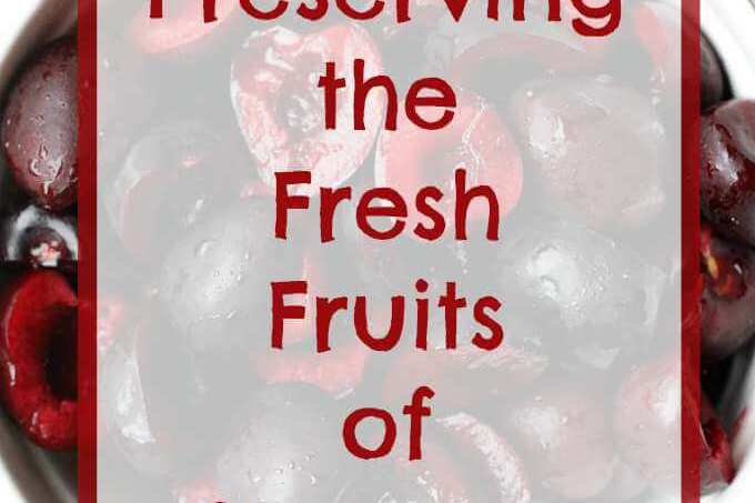 Preserving the Fresh Fruits of Summer