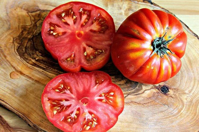 toasted provolone cheese with sliced tomatoes lydia s flexitarian