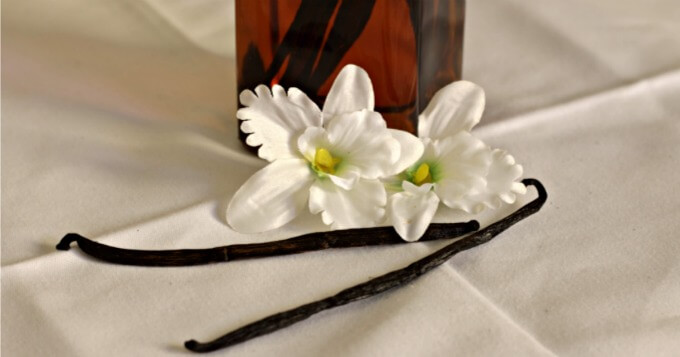 Make Your Own Vanilla Extract for Holiday Baking or Gift Giving ~ Lydia's Flexitarian Kitchen