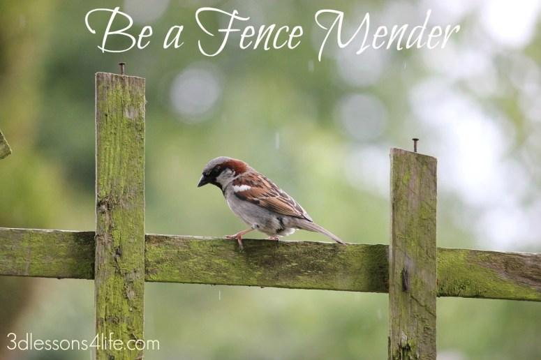Mend Fences