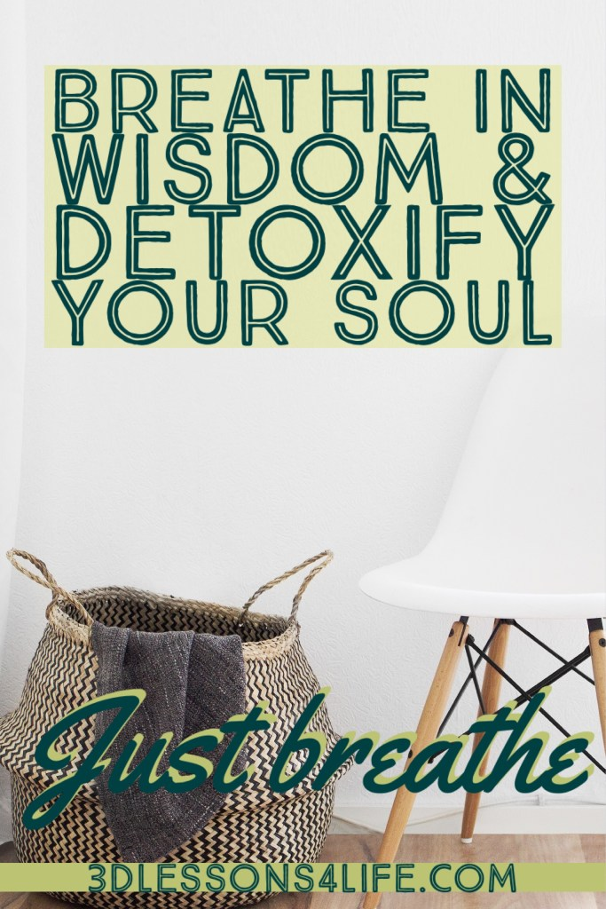 Detoxify Your Soul | Just Breathe for 31 Days - Day 16 | 3dlessons4life.com
