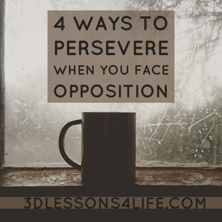 4 Ways to Persevere When You Face Opposition | 3dlessons4life.com