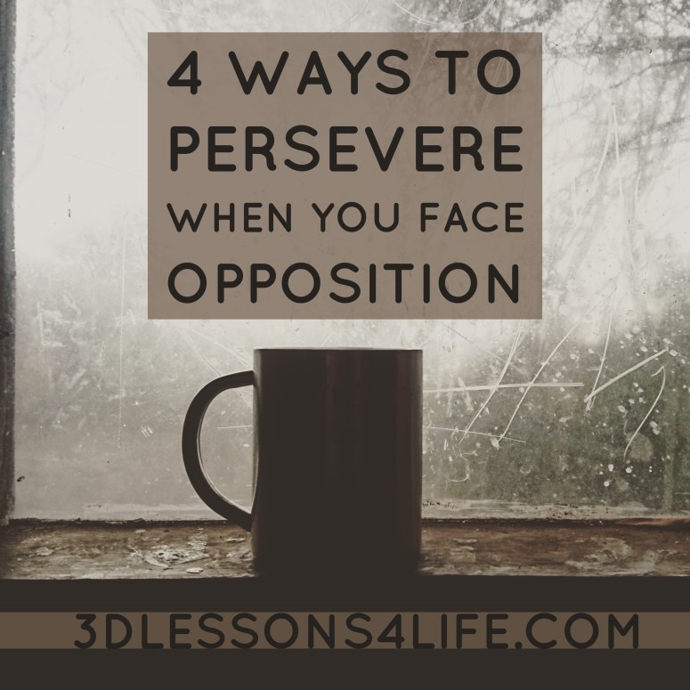 4 Ways to Persevere When You Face Opposition   3dlessons4life.com
