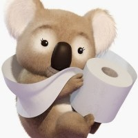 Życie codzienne w Australii. cz. 1. Toaleta publiczna.