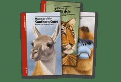 Colección Lynx Illustrated Checklists