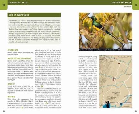 Birding Ethiopia sample page