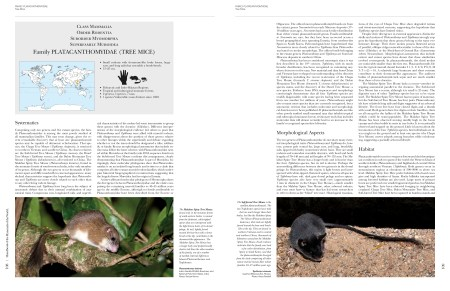 Handbook of the Mammals of the World - Volume 7 sample page