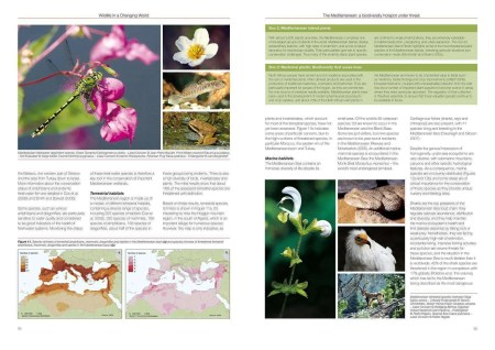 Wildlife in a changing world sample page