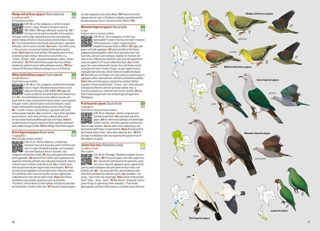 Birds of Thailand sample page