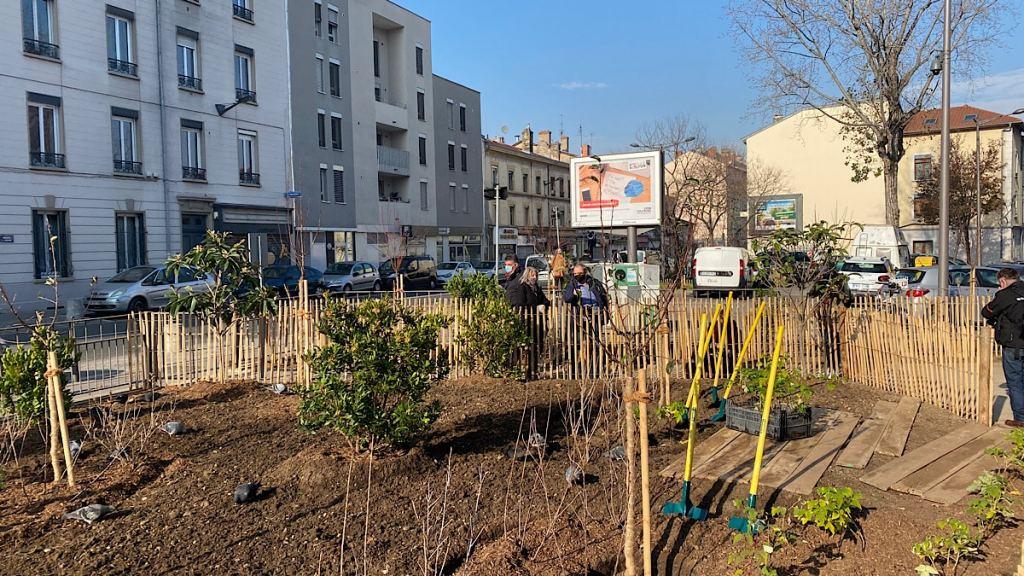 La Ville de Lyon crée un verger par arrondissement