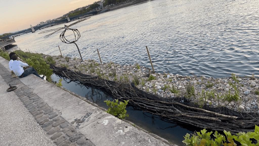 Gabiodiv est un projet qui vise à réintroduire la biodiversité en ville le long du Rhône et de la Saône