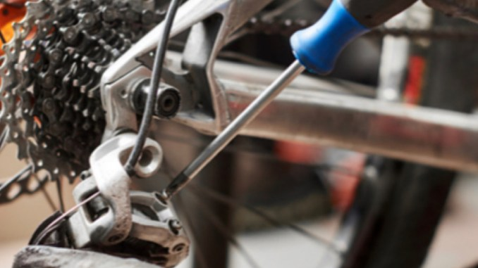 Pénurie de main d'oeuvre chez les vélocistes lyonnais