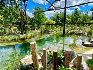 Un nouvel espace de découverte des animaux au parc de la Tête d'Or
