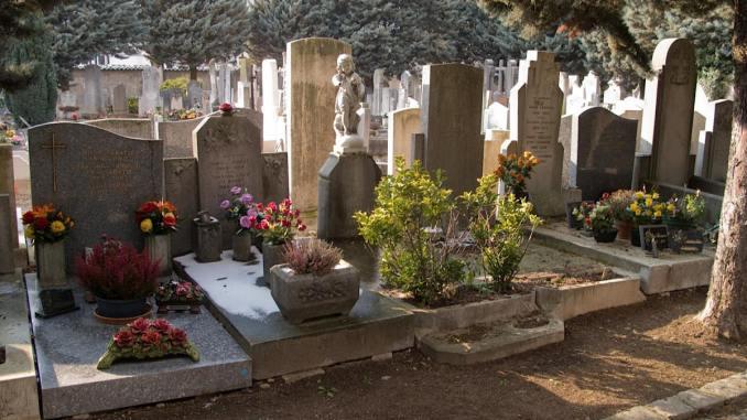 Les cimetières de la Guillotière reconnus comme refuges de biodiversité