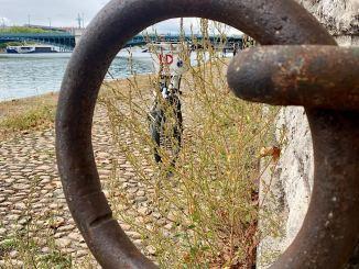 anneau de bateau