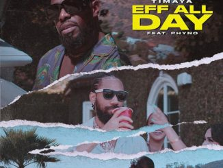 Timaya Taps Phyno For New Single/Video, 'Eff All Day'