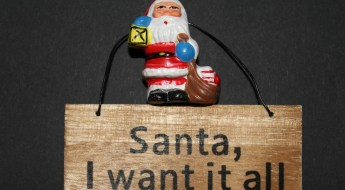 Santa, I want it all sign
