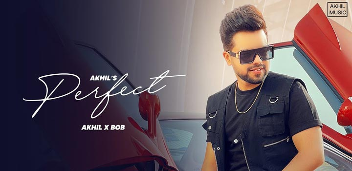 Perfect Lyrics by Akhil