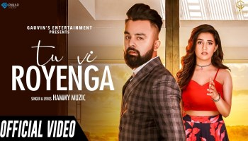 Tu Vi Royenga Lyrics - Hammy Muzic | Upma Sharma