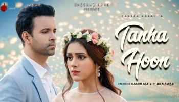 Tanha Hoon Lyrics - Yasser Desai | Aamir Ali, Hiba Nawab