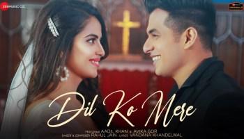 Dil Ko Mere Lyrics - Rahul Jain | Aadil Khan, Avika Gor
