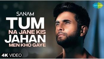 Tum Na Jane Kis Jahan Men Kho Gaye Lyrics - Sanam