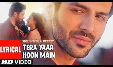 tera yaar hoon main lyrics hindi | तेरा यार हूँ मैं
