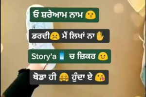 Storyan Ch Zikar Punjabi Love Song Status Download Video Oh shreaam naam dardi mein likha naa Storian ch jikar thoda hi hunda ae status
