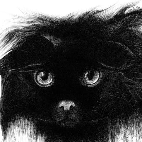 """""""Noir Subtile"""""""