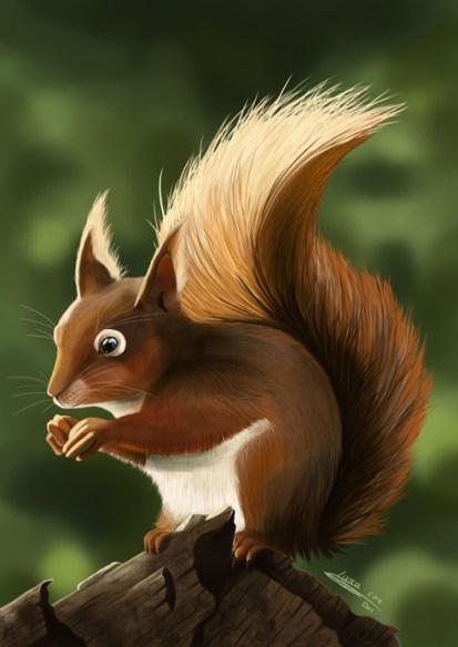 """Résultat de recherche d'images pour """"ecureuil dessin"""""""