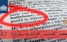 اختبار6: تدرب على كلمات هولندية جديده