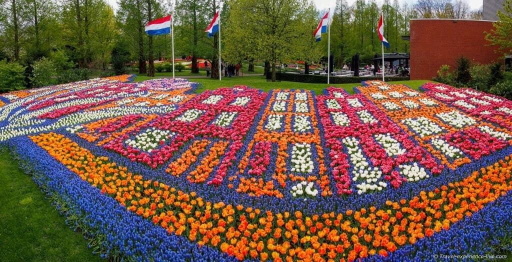 بالفيديو 360 : مهرجان الزهور في هولندا.. إبداع