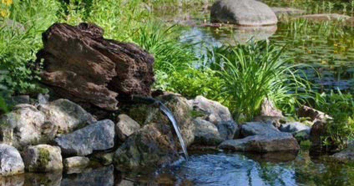Crer Un Ruisseau De Jardin Technique Et Travaux