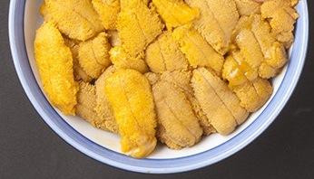 """Sea Urchin """"Uni"""" うに"""