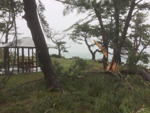 台風21号のキャンプ場への影響に関して