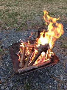 【お知らせ】11/24(土)キャンプ場内一部で焚き火イベントあり