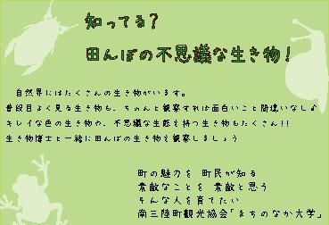 8月17日(日) 田んぼの生き物観察会
