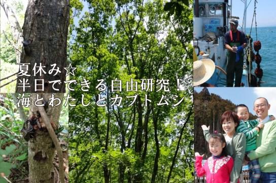 夏休み☆半日でできる自由研究「海とわたしとカブトムシ」