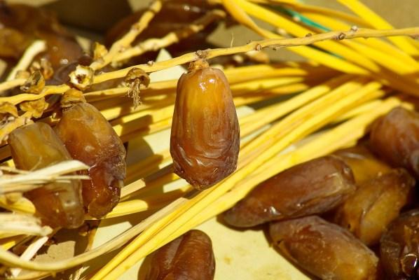 Datteln – Superfood für den Säure-Basen-Haushalt