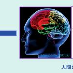 図4 「人工知能」は、「人間の知能」をまねて作られる。Arranged by 飯箸