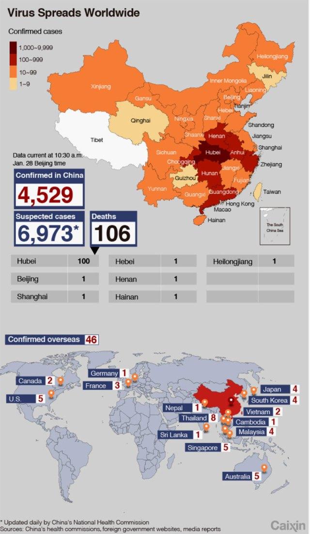 corona virus infection rate