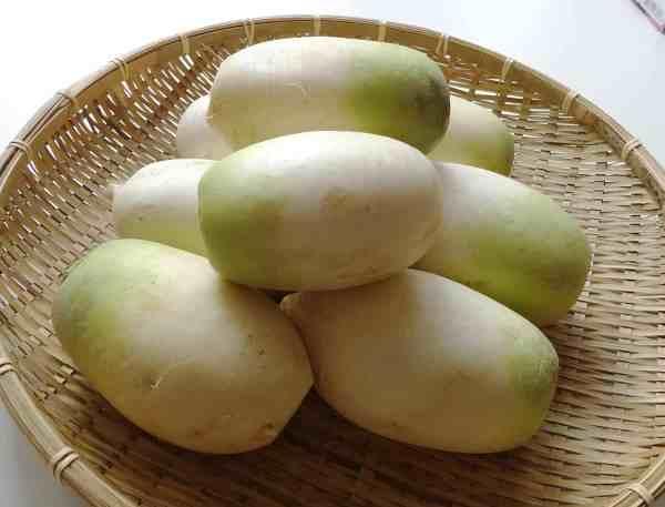 Korean radish Mu Korean cooking ingredients Maangchicom