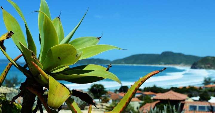 Brazilië | Búzios, de favoriete badplaats van Brigitte Bardot