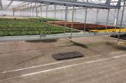 serre horticulture – MAAS