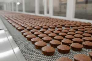 bande transporteuse chocolat - sortie chocolat
