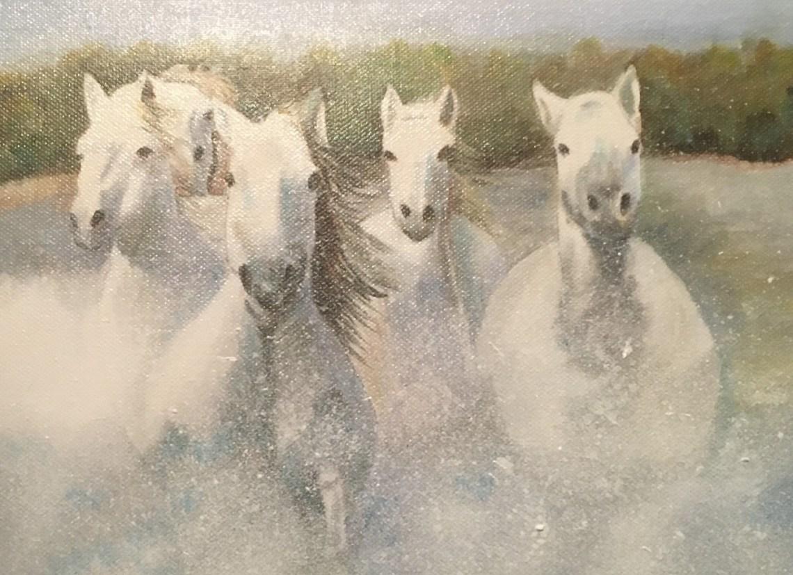 © Ria Biesheuvel - Witte paarden