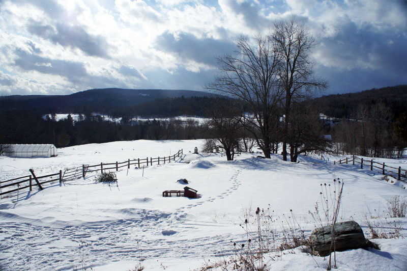 Farm Stay Vermont